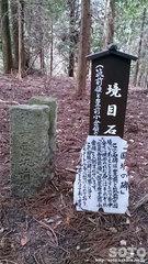 行者杉(境目石)
