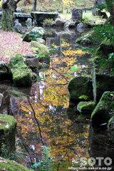 北畠氏館跡庭園(08)