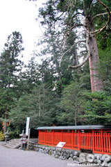 北畠氏館跡庭園(12)