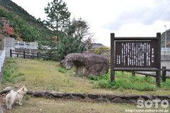 諭鶴羽ダム(岩)