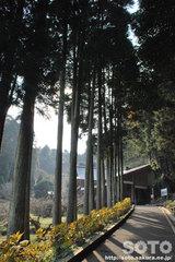 臼杵磨崖仏(01)