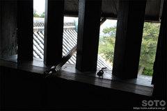 松江城(窓)