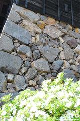 松江城(石垣の数字)
