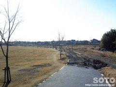 菊池河川公園(2)