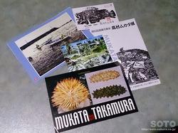 高村ムカタ氏カード類
