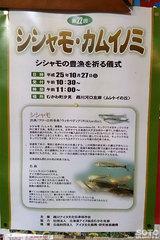 シシャモ・カムイノミ