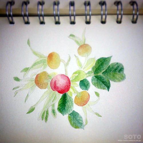 お絵描き(021)