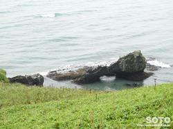 霧多布岬(12)