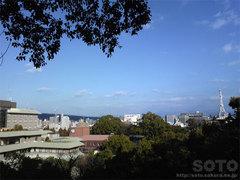 加藤神社からの眺め