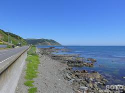 礼文島 海岸線(1)