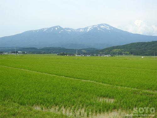 鳥海山(2019/06/21)