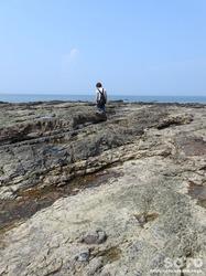 天草の海岸(1)