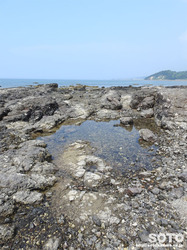 天草の海岸(2)