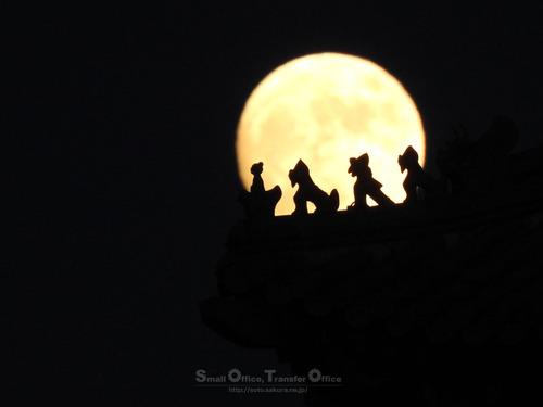 祀聖亭と月