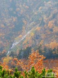 層雲峡・黒岳(26)