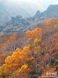 層雲峡・黒岳(27)