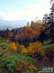層雲峡・黒岳(29)