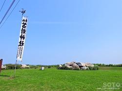 苫前(ハマナスの丘)