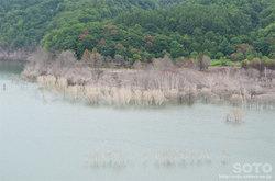 シューパロ湖(3)