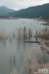 シューパロ湖(6)