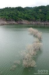 シューパロ湖(7)