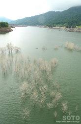 シューパロ湖(8)