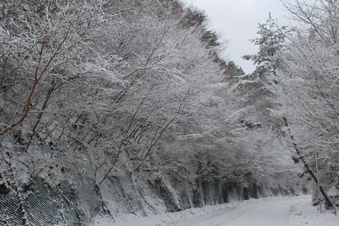 冬景色(2)