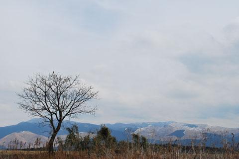 風景(1)