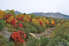 望岳橋からの眺め