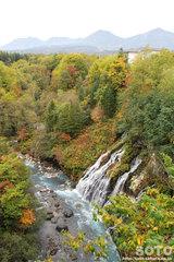 白ひげの滝(1)