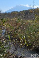 赤沼散策路と岩手山
