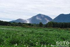 硫黄山とジャガイモ畑