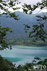 オコタンペ湖(2)
