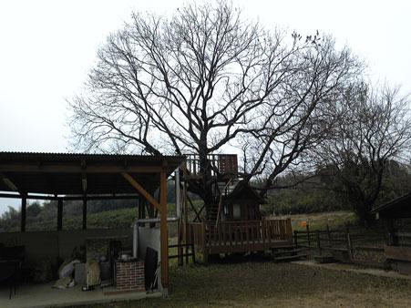 玉名牧場(1)