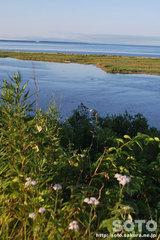 尾岱沼からの眺め