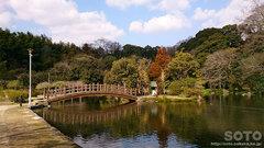 八景水谷公園(3)