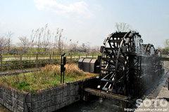 三連水車の里あさくら(5)