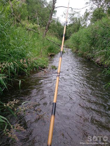 渓流釣り(3)