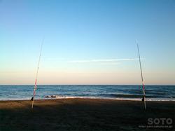 鮭釣り(2017/08/26)