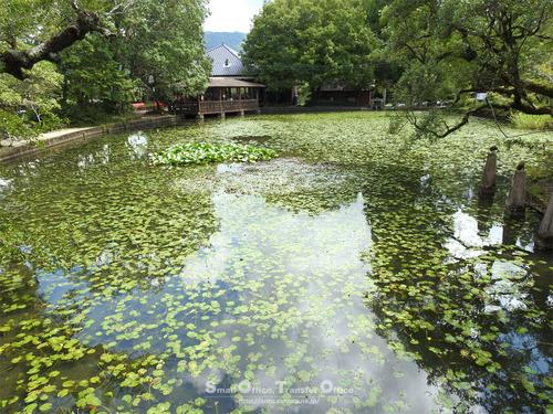 星のふるさと公園(麻生池)