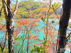 然別湖散策(4)