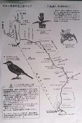 旭岳温泉・ロープウェー周辺探索路案内図