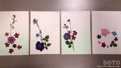 押し花体験(2)