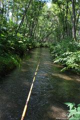 釣り体験(2)