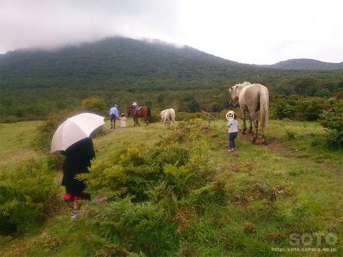 あっぴ高原遊々の森・乗馬体験(1)
