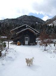 山小屋(20110117_2)