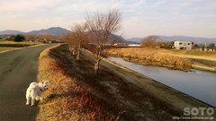 水辺プラザ(お散歩)