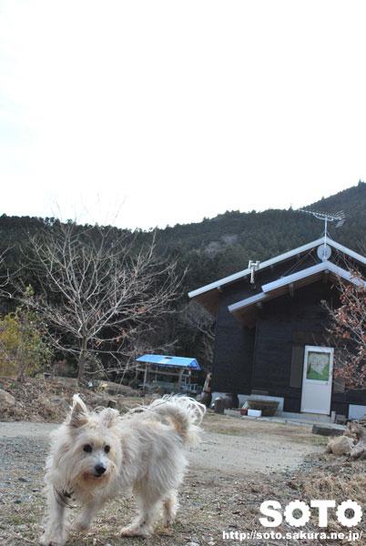 山小屋とマリリン