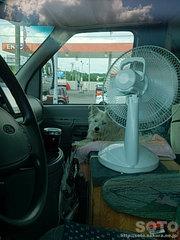 マリリンと扇風機