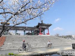 泗水孔子公園(2)